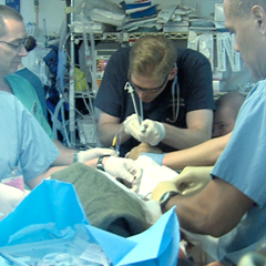 Airway: Core Clinical Module