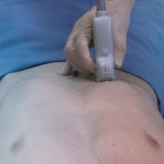 Intestinal/Biliary: Core Clinical Module