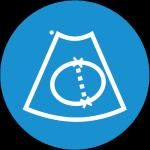 Full Fetal Biometry Menu - Learn to measure CRL, head circumference, and estimate gestational age